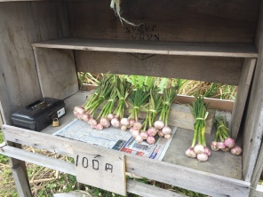 local Okinawa garlic